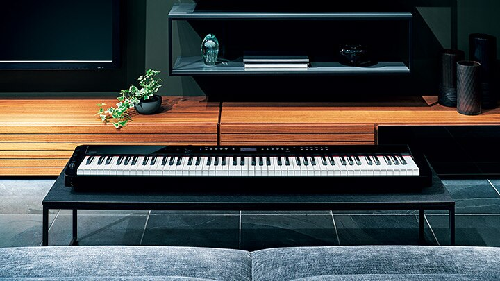 privia digital pianos electronic musical instruments casio. Black Bedroom Furniture Sets. Home Design Ideas
