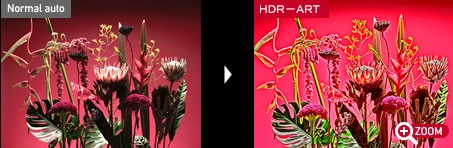 HDR-ART for dramatic images.