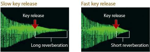 Key Off Simulator tái tạo các biến thể âm do phát hành ngón tay