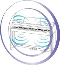 Sistema acústico de piano de cauda