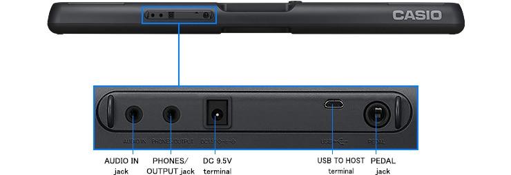 Input/output terminals
