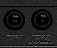 Lots of Expansion Ports for Easier Performance, Songwriting and Editing