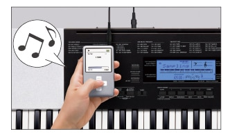CTK-860IN | Localized Keyboards | Electronic Musical Instruments | CASIO