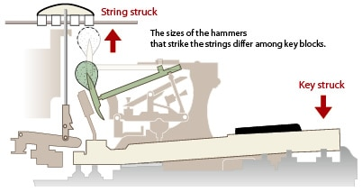 The sizes of the hammers that strike the strings differ among key blocks.