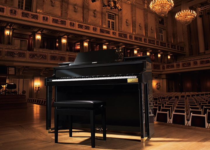 image:CELVIANO Grand Hybrid GP-500BP 2
