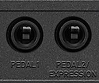 Muchos puertos de expansión para facilitar las presentaciones, la composición y la edición