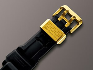 Thirty stars are engraved on the strap keeper